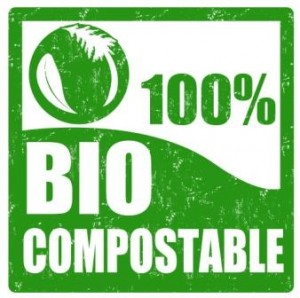 Biodegradable paper light